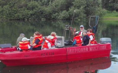 Jungfische für den Rhein