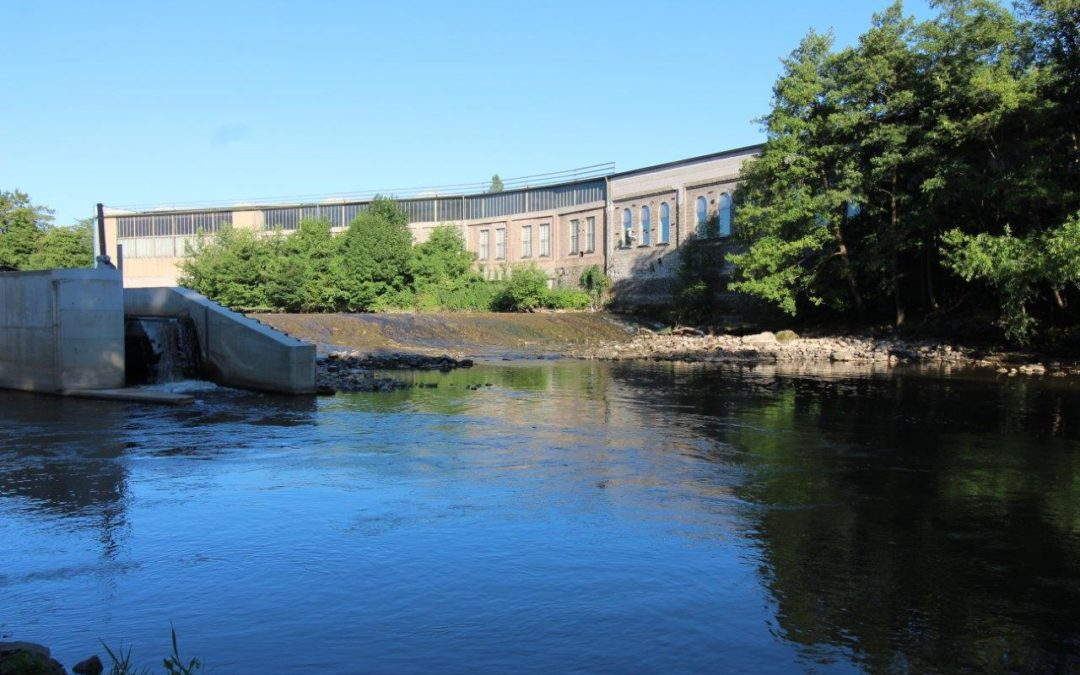 Wasserkraft trägt zur Verschlechterung der Klimaziele bei