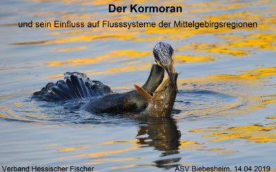 """Vortrag """"Der Kormoran und sein Einfluss auf Flusssysteme der Mittelgebirgsregionen"""""""