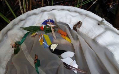 Mikroplastik in Gewässern belastet Mensch und Tier