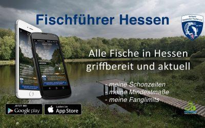 Fischführer Hessen